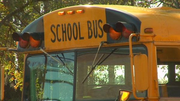 school bus_26819