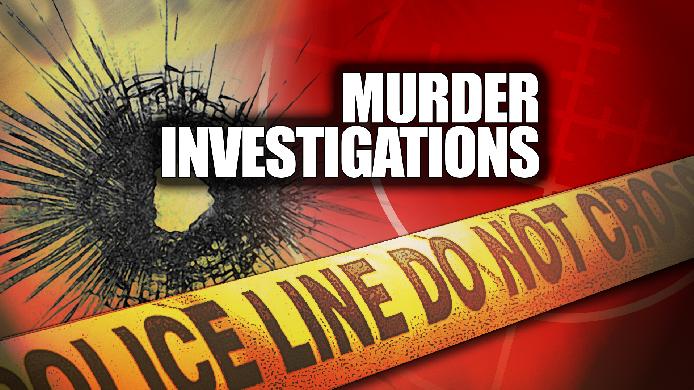 Murder Investigation_22331