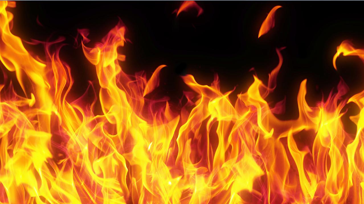 controlled burn_92470