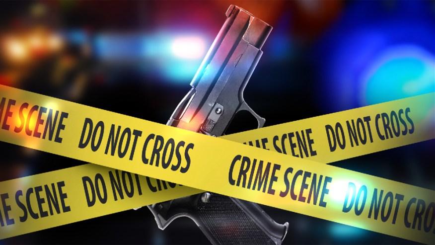 Shot fired at Savannah Mall; Craigslist transaction gone awry