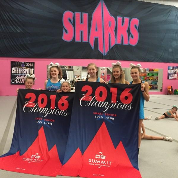 sav sharks_116483
