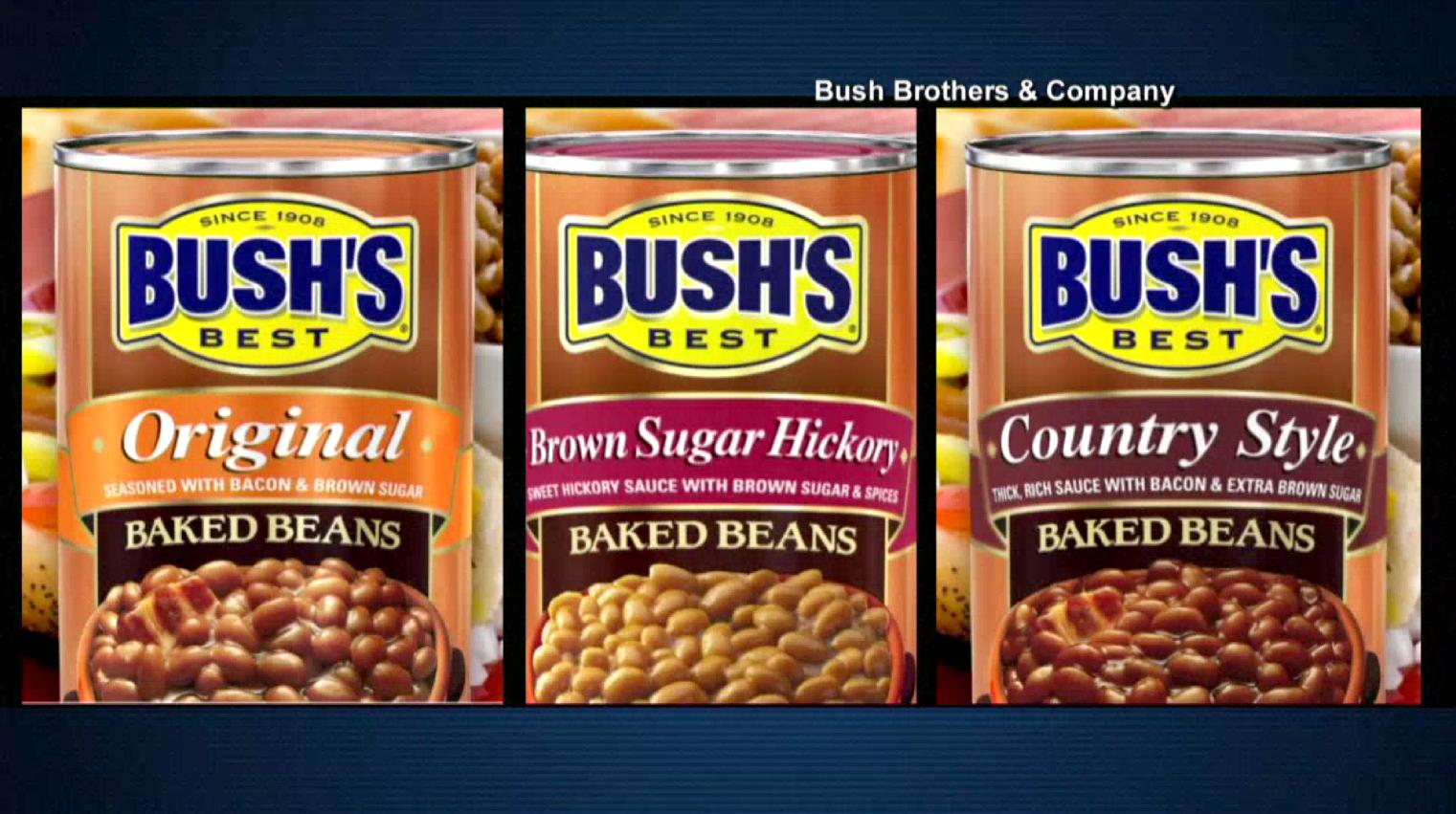 bush's beans_273923