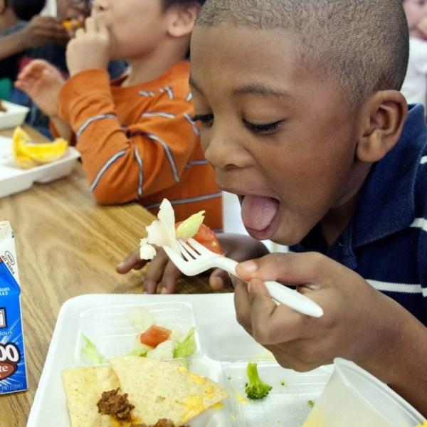 school lunch summer_1526924169204.jpg