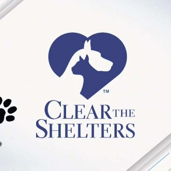 CLEAR_THE_SHELTERS__National_Puppy_Day_20180608032653-159532
