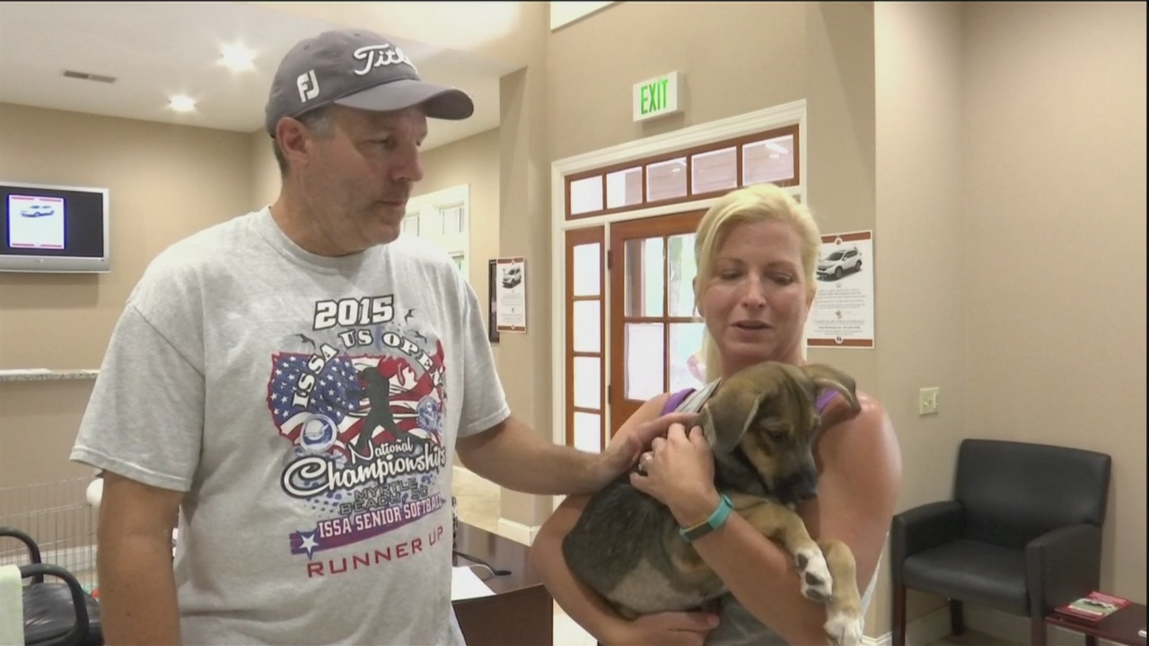 Clear_The_Shelters__Couple_gives_two_dog_1_20180827234639