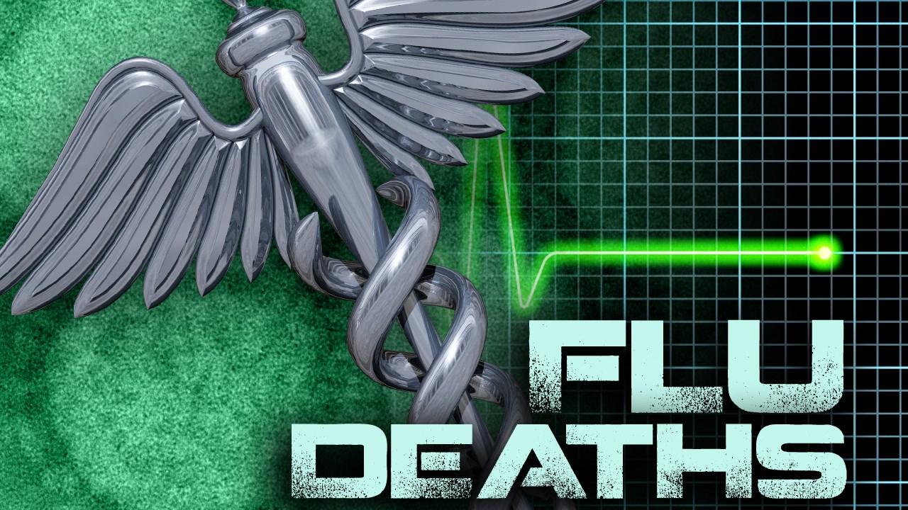 FLU DEATHS.jpg