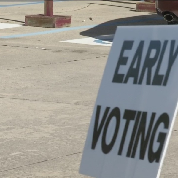 Early voters react