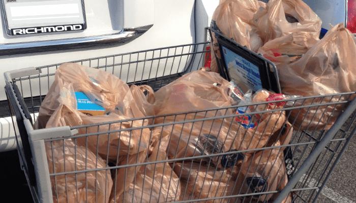 grocery cart bags_1540925027283.png.jpg