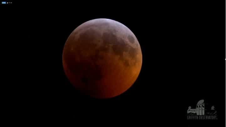 Video__Rare_super_blood_wolf_moon_time_l_0_20190121115019
