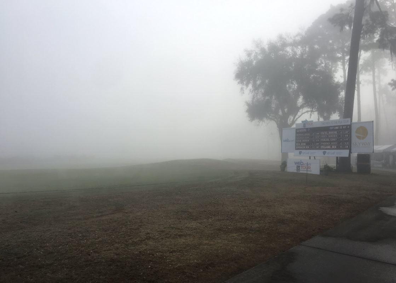 fog_1553865242123.JPG