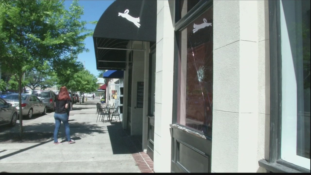 Cat Cafe Vandalized