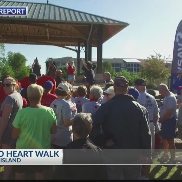 Palmetto Heart Walk 2019