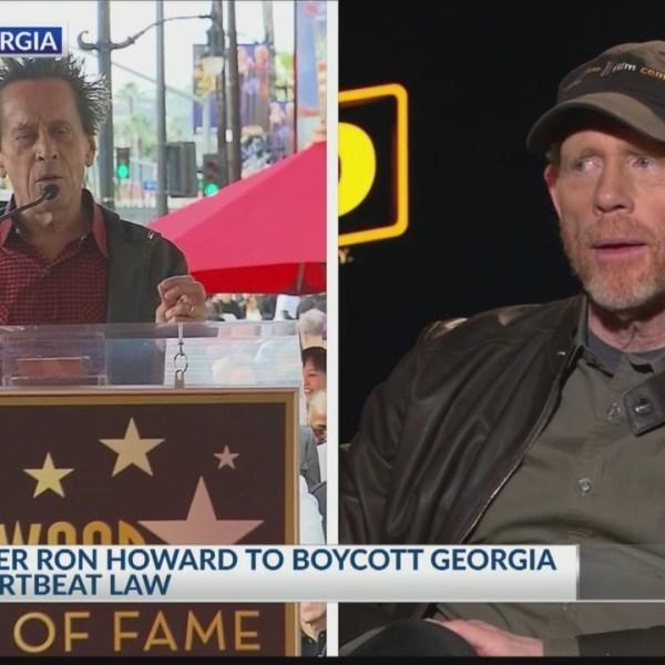 Boycott_over__heartbeat__bill_0_20190521092920