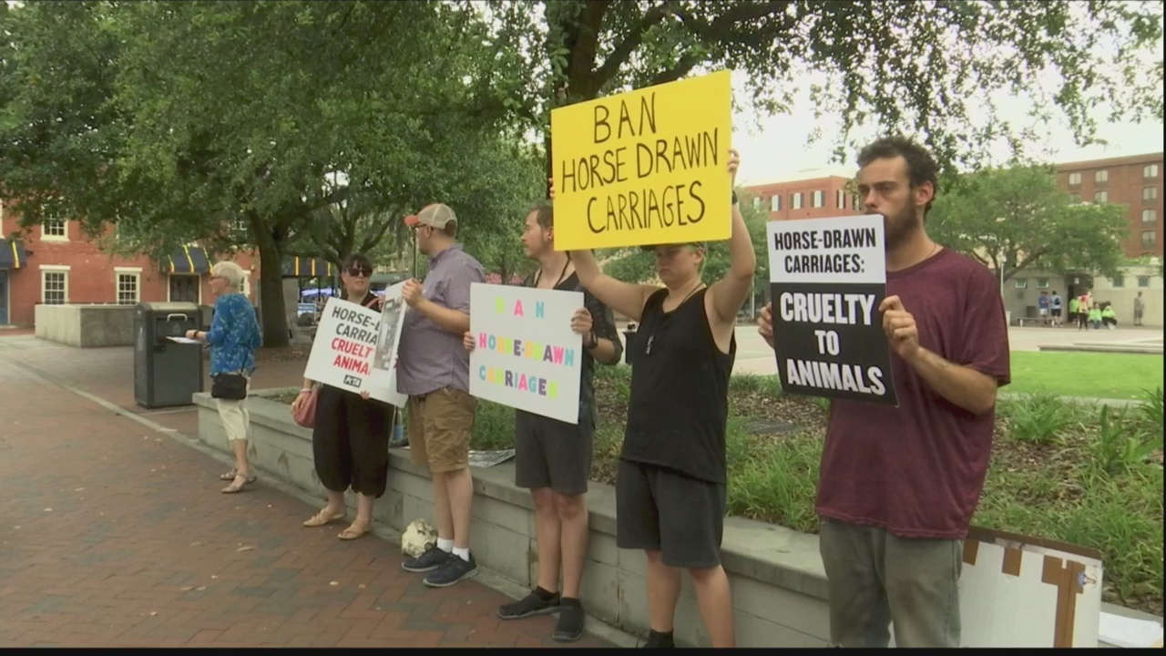 Animal activists protest horse drawn carriages in Savannah