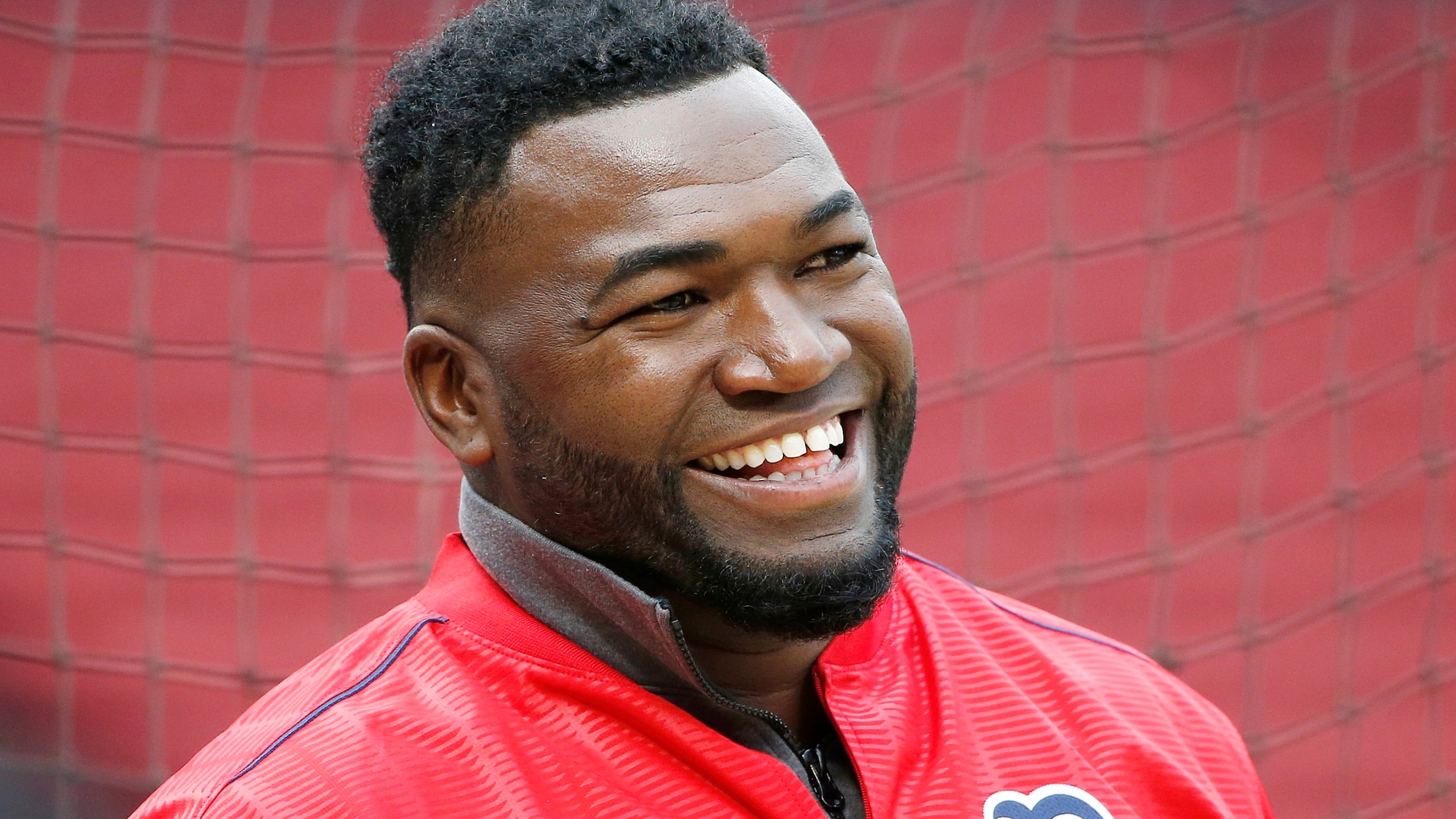 David_Ortiz_Shot_Baseball_26592-159532.jpg79136332
