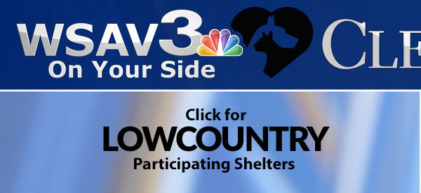 Lowcountry Shelters