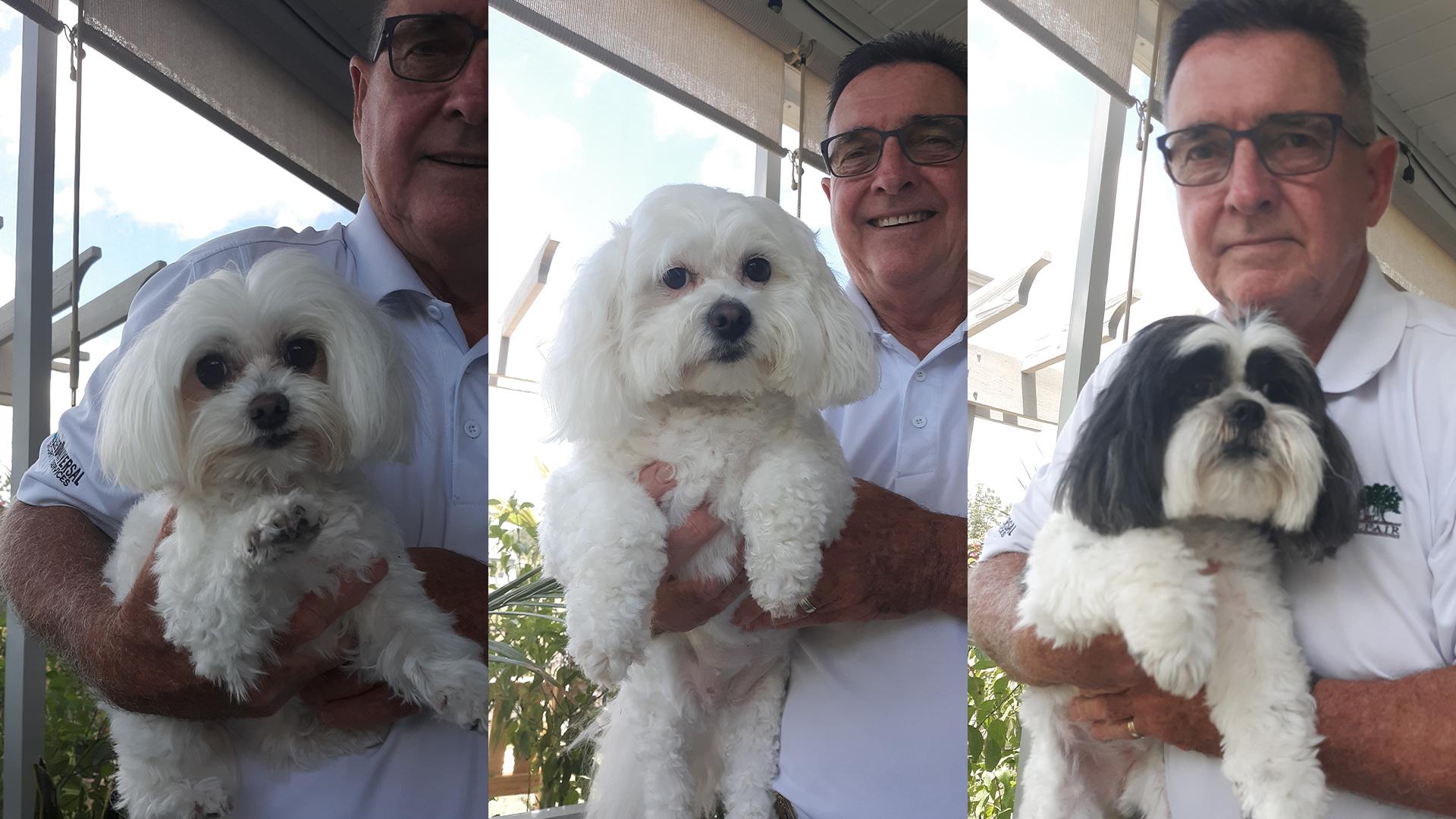 GALLERY: WSAV viewers share pet rescue stories | WSAV-TV